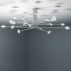 Icone Arbor 20PL LED Deckenleuchte